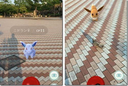 Pokemon GO ポケモンGO 鳥型リアルポケモン