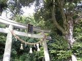泉神社の湧水(3)