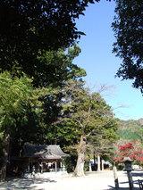 水屋(遠景)