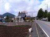 須山の小径