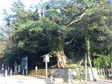鹿島神宮 参道入り口