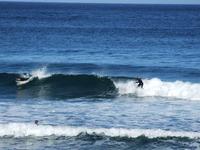 サーフィン(7)