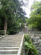 泉神社の湧水(5)
