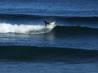 サーフィン(5)