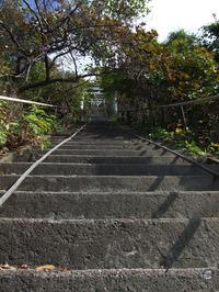 太田神社(4)