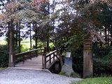 かっぱ淵の橋