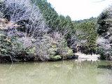 皿山生活環境保全林いこいの池