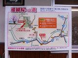 醍醐の櫻 案内図