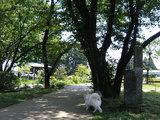 『にしなすの』公園