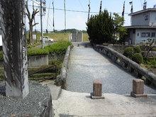 高瀬裏川花しょうぶ(石橋上)