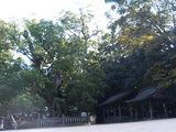 大山祇神社(3)