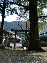 花岡神社とマリリン