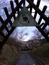 大津キャンプ場
