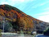 国道152の風景