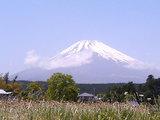 ゴテビオフ富士山