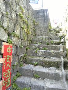 高瀬裏川花しょうぶ(小径2)