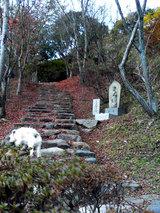 多宝塔への階段