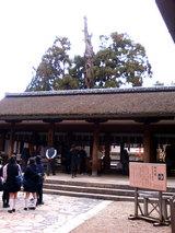 春日大社(拝殿)