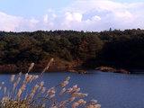 精進湖から見た富士山