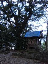 愛宕神社(2)