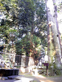 一言主神社(9)