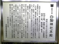 白髭神社(4)