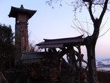 音戸の瀬戸公園入り口の巨木