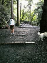 養老公園(3)