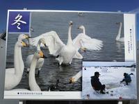 おがわら湖(冬)