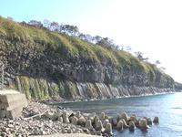 鮪の岬(1)