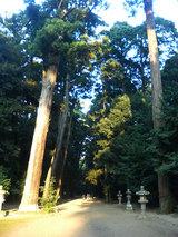 鹿島神宮 奥宮への道