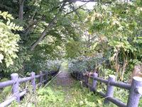 知内町農村公園への道