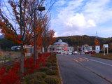 小坂田公園の紅葉