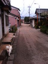 関宿(マリリン)