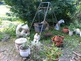 陶芸教室のお庭にて