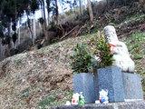 八大龍王神社前にある像