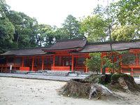 宇佐神宮(11)