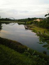 杉焼き溜め池