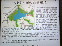 道の駅『ウトナイ湖』(4)
