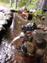 久慈渓流の湧水