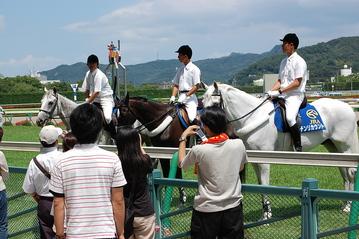 誘導馬との交流