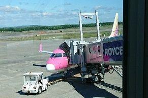 ピンク飛行機