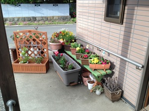 桃の木停ふるさわ玄関 (2)