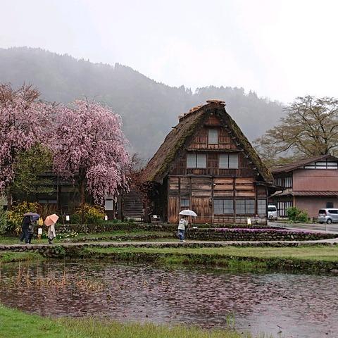 19-04-27-12-23-46-465_photo