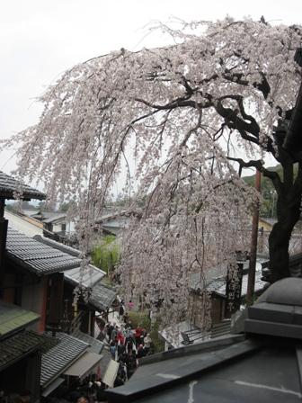 4月京都3