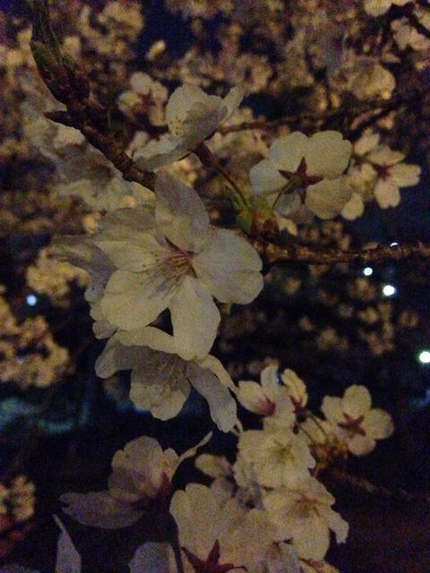 2014-04-02-20-25-42