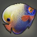 enxyerufish