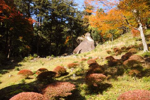 autumn_0815