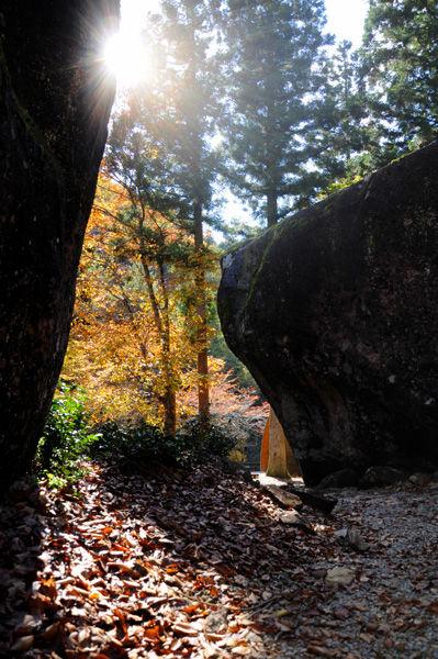 autumn_0821