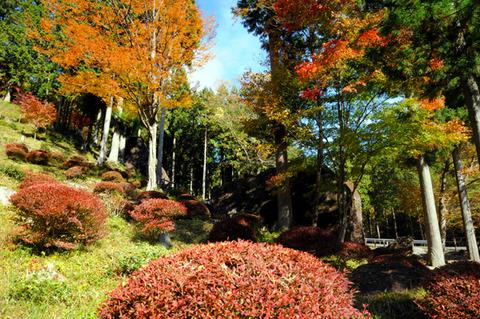 autumn_0820